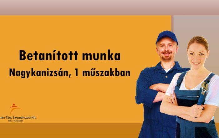 Operátor állás Nagykanizsán, 1 műszakos munkarendben. Bérelőleg heti rendszerességgel kérhető. Törvény szerinti utazási költségtérítést biztosítunk.